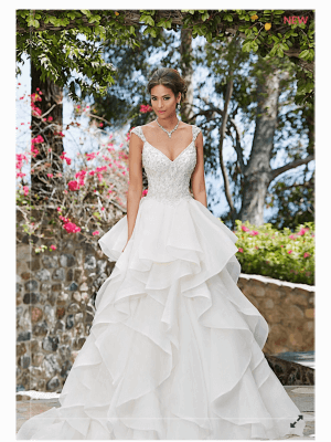 Ball Gown dress by The Bridal Company