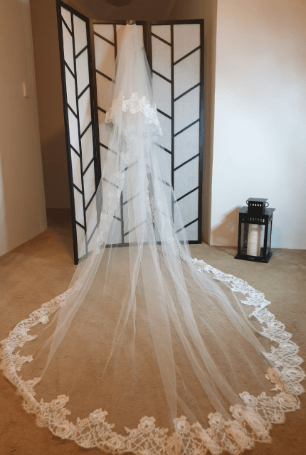 Nicole Spose – Size 10 Ball Gown dress | Second hand wedding dresses Kensington - 8