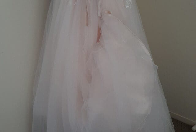 Cizzy – Size 16 Strapless dress | Second hand wedding dresses Muswellbrook - 3
